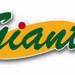 2. Giant-logo
